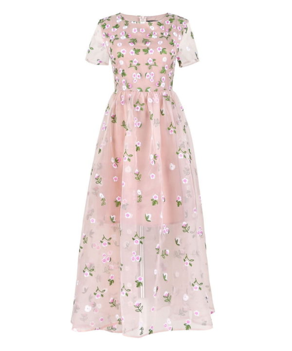 Nude-Green-Floral-Embroider-Embellished-Dress-Tulle-Organza-Maxi-V-Jessica-Alba (2)